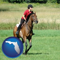 florida map icon and an English-style rider atop a handsome brown horse