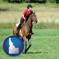 idaho map icon and an English-style rider atop a handsome brown horse