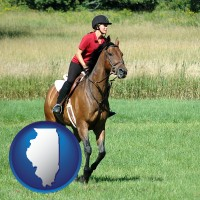 illinois map icon and an English-style rider atop a handsome brown horse