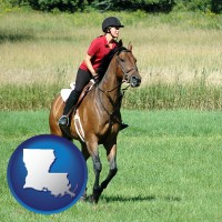 louisiana map icon and an English-style rider atop a handsome brown horse