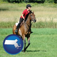 massachusetts map icon and an English-style rider atop a handsome brown horse