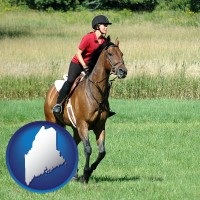 maine map icon and an English-style rider atop a handsome brown horse