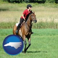 north-carolina map icon and an English-style rider atop a handsome brown horse