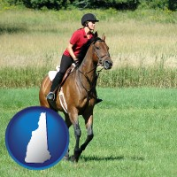 new-hampshire map icon and an English-style rider atop a handsome brown horse