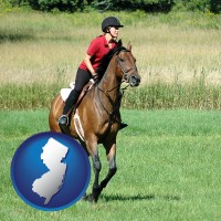 new-jersey map icon and an English-style rider atop a handsome brown horse