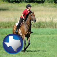 texas map icon and an English-style rider atop a handsome brown horse