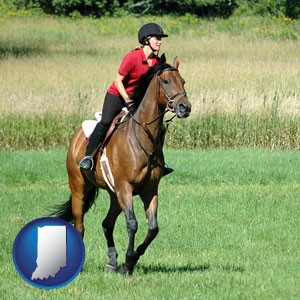 an English-style rider atop a handsome brown horse - with Indiana icon