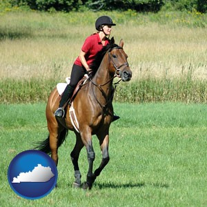 an English-style rider atop a handsome brown horse - with Kentucky icon