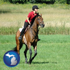 an English-style rider atop a handsome brown horse - with Michigan icon