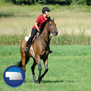 an English-style rider atop a handsome brown horse - with Nebraska icon