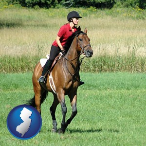 an English-style rider atop a handsome brown horse - with New Jersey icon