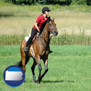 an English-style rider atop a handsome brown horse - with Pennsylvania icon